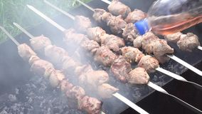 Barbecue With Delicious Grilled Meat On Grill. Barbecue Party. Zooming. 4K UltraHD, UHD stock video footage