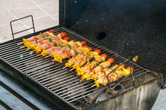 Barbecue with delicious grilled meat on grill Royalty Free Stock Photography