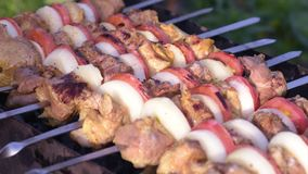 Barbecue with delicious grilled meat stock footage