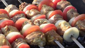 Barbecue with delicious grilled meat stock video