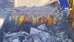 Barbecue with delicious grilled meat and vegetables cooked on the grill stock video