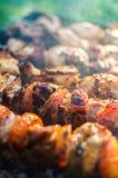 Barbecue delizioso sulla natura Immagini Stock