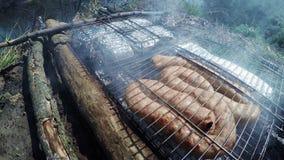 Barbecue della carne e del pesce archivi video