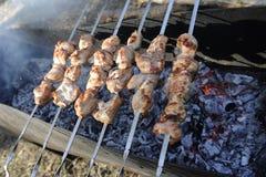 Barbecue della carne sugli skewres Fotografie Stock