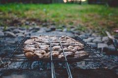 Barbecue di estate con il pollo pranzo Fotografia Stock