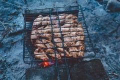 Barbecue di estate con il pollo pranzo Fotografie Stock