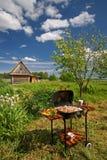 Barbecue di picnic in un giardino Fotografia Stock Libera da Diritti