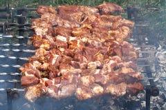 Barbecue di torrefazione Fotografie Stock Libere da Diritti