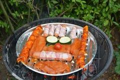 Barbecue divertente Immagine Stock Libera da Diritti