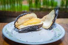 Barbecue durian on stove. The durian is brought to burn on stove to add flavor. Eat hot durian with extra nutrients Stock Photos