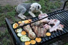 Barbecue en hond Royalty-vrije Stock Afbeeldingen