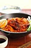 Barbecue en knapperig varkensvlees met jussaus op rijst royalty-vrije stock afbeeldingen