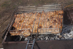 Barbecue en nature Images stock