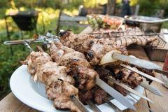 Barbecue extérieur en été image libre de droits
