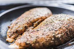 Barbecue fillet of chicken breast Royalty Free Stock Photos