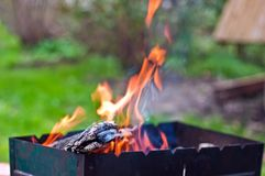 Barbecue fire. Outdoors at summer Royalty Free Stock Images