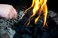 Barbecue fire Royalty Free Stock Photography