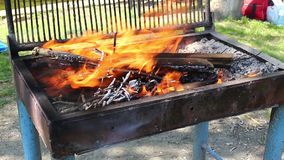 Barbecue Fire stock video