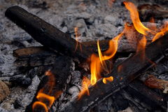 Barbecue fire. Flames of fire burning some at a barbacue while out camping. Flaming camp fire with white ashes at the back Stock Photos