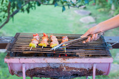 Barbecue on fire Stock Images