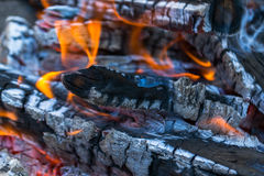 Barbecue and fire Stock Images
