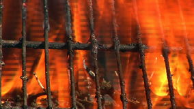 Barbecue fire 01 stock video footage