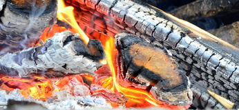Barbecue-fire wood Royalty Free Stock Images