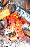 Barbecue-fire wood Stock Image