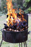 Barbecue fireplace Royalty Free Stock Image