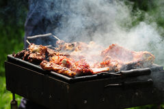 Barbecue in the forest.shashlik at nature Royalty Free Stock Photography