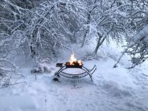 Barbecue in foresta nevosa nell'orario invernale immagine stock libera da diritti