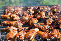 Barbecue or fried chicken and pork meat Stock Images