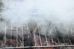 Barbecue fritto sul falò e sui carboni Fotografia Stock Libera da Diritti