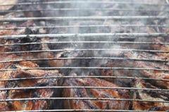 Barbecue fritto sul falò e sui carboni Fotografia Stock