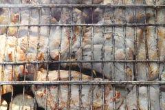 Barbecue fritto sul falò e sui carboni Fotografie Stock Libere da Diritti