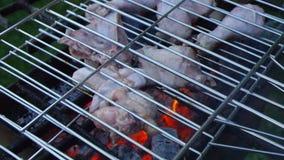 barbecue galinha filme