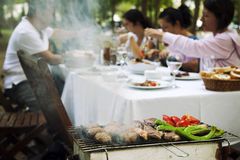 Barbecue in the Garden Royalty Free Stock Photos