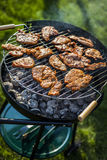 Barbecue in the garden, really tasty dinner! Stock Image