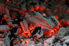 Barbecue glow. Wood and carcoal glow during the barbecue preparation royalty free stock photography