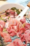 Barbecue grezzo del porco Immagine Stock