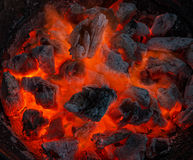 Barbecue grill. Red hot burning charcoal preparing for grilling. Barbecue grill. Soft focus Stock Photography