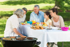 Barbecue grill with extended family having lunch in park Stock Photo