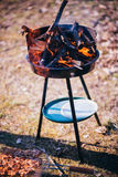 Barbecue grill and fire Stock Image