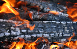 Barbecue Grill flame fire charcoal Stock Photo