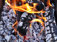 Barbecue Grill Flame Fire Charcoal Royalty Free Stock Images