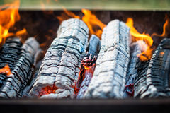 Barbecue grill flame, hot grill with burning pine cone, outdoors. Selective focus. Royalty Free Stock Photos
