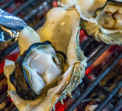 Barbecue Grill seafood. Royalty Free Stock Photography