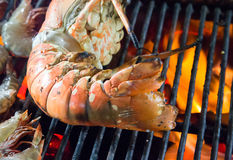 Barbecue Grill seafood. Stock Image