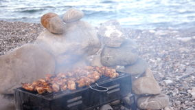 Barbecue on the grill stock video footage