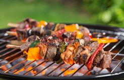 Barbecue grill with various kinds of meat. Stock Images